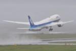 M.Ochiaiさんが、宮崎空港で撮影した全日空 787-9の航空フォト(写真)