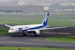 kaeru6006さんが、羽田空港で撮影した全日空 787-8 Dreamlinerの航空フォト(写真)