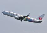 じーく。さんが、宮崎空港で撮影した日本航空 737-846の航空フォト(飛行機 写真・画像)