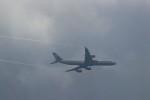 ゆなりあさんが、中部国際空港で撮影したルフトハンザドイツ航空 A340-642の航空フォト(写真)