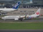 cooperさんが、羽田空港で撮影したJALエクスプレス 737-846の航空フォト(写真)