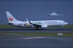 SIさんが、羽田空港で撮影した日本航空 737-846の航空フォト(写真)