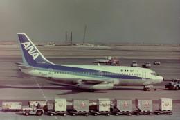 ヒロリンさんが、羽田空港で撮影した全日空 737-281/Advの航空フォト(飛行機 写真・画像)