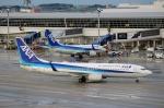ハピネスさんが、中部国際空港で撮影した全日空 737-881の航空フォト(飛行機 写真・画像)