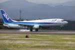 VEZEL 1500Xさんが、静岡空港で撮影した全日空 737-881の航空フォト(写真)