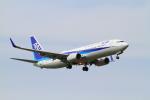武彩航空公司(むさいえあ)さんが、成田国際空港で撮影した全日空 737-881の航空フォト(写真)
