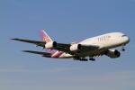 武彩航空公司(むさいえあ)さんが、成田国際空港で撮影したタイ国際航空 A380-841の航空フォト(写真)