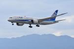 ITM44さんが、伊丹空港で撮影した全日空 787-8 Dreamlinerの航空フォト(写真)