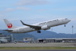 hideohさんが、高松空港で撮影した日本航空 737-846の航空フォト(写真)