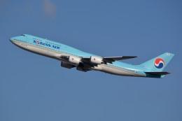 サンドバンクさんが、成田国際空港で撮影した大韓航空 747-8B5の航空フォト(飛行機 写真・画像)