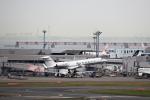 T.Sazenさんが、羽田空港で撮影したプライベートエア G-V-SP Gulfstream G550の航空フォト(飛行機 写真・画像)