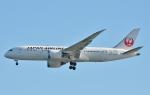 鉄バスさんが、羽田空港で撮影した日本航空 787-8 Dreamlinerの航空フォト(写真)