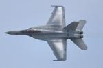 totsu19さんが、岩国空港で撮影したアメリカ海軍 F/A-18F Super Hornetの航空フォト(写真)
