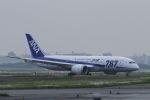 mocohide☆さんが、福岡空港で撮影した全日空 787-8 Dreamlinerの航空フォト(写真)