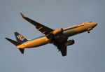 MOHICANさんが、福岡空港で撮影した全日空 737-881の航空フォト(写真)
