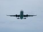 atiiさんが、プーケット国際空港で撮影したタイ・スマイル A320-232の航空フォト(写真)