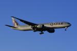 地主さんが、成田国際空港で撮影したカタール航空 777-3DZ/ERの航空フォト(写真)
