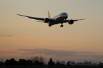 sorajiさんが、伊丹空港で撮影した全日空 787-8 Dreamlinerの航空フォト(写真)