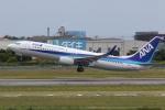 NIKEさんが、松山空港で撮影した全日空 737-881の航空フォト(写真)