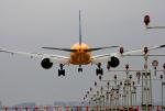 tsubameさんが、福岡空港で撮影した全日空 777-281/ERの航空フォト(写真)