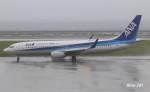 RINA-281さんが、大分空港で撮影した全日空 737-881の航空フォト(写真)