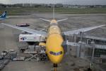 sorajiさんが、伊丹空港で撮影した全日空 777-281/ERの航空フォト(写真)