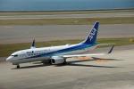Wasawasa-isaoさんが、中部国際空港で撮影した全日空 737-881の航空フォト(写真)