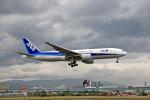 tsubameさんが、福岡空港で撮影した全日空 777-281の航空フォト(写真)