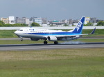 うすさんが、伊丹空港で撮影した全日空 737-881の航空フォト(写真)