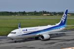 ぬま_FJHさんが、宮古空港で撮影した全日空 737-881の航空フォト(写真)