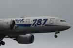 imosaさんが、羽田空港で撮影した全日空 787-8 Dreamlinerの航空フォト(写真)