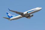 Koenig117さんが、関西国際空港で撮影した全日空 737-881の航空フォト(写真)