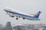 TG36Aさんが、羽田空港で撮影した全日空 A321-272Nの航空フォト(写真)