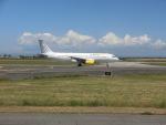 ilv583さんが、レオナルド・ダ・ヴィンチ国際空港で撮影したブエリング航空 A320-214の航空フォト(写真)