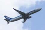 Mochi7D2さんが、成田国際空港で撮影した全日空 737-881の航空フォト(写真)