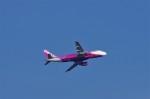 mild lifeさんが、関西国際空港で撮影したピーチ A320-214の航空フォト(写真)