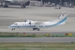 TG36Aさんが、羽田空港で撮影した海上保安庁 DHC-8-315 Dash 8の航空フォト(写真)
