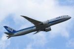 Mochi7D2さんが、成田国際空港で撮影した全日空 787-9の航空フォト(写真)