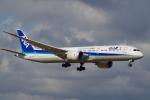 TG36Aさんが、成田国際空港で撮影した全日空 787-9の航空フォト(写真)