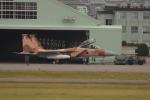 おんちゃんさんが、小松空港で撮影した航空自衛隊 F-15DJ Eagleの航空フォト(写真)