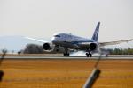 itkさんが、熊本空港で撮影した全日空 787-8 Dreamlinerの航空フォト(写真)