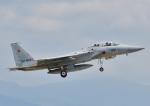 じーく。さんが、新田原基地で撮影した航空自衛隊 F-15DJ Eagleの航空フォト(写真)