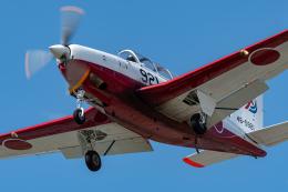 みぐさんが、静浜飛行場で撮影した航空自衛隊 T-7の航空フォト(飛行機 写真・画像)