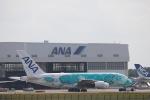 yasunori0624さんが、成田国際空港で撮影した全日空 A380-841の航空フォト(写真)