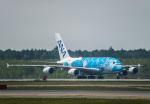 Cygnus00さんが、新千歳空港で撮影した全日空 A380-841の航空フォト(写真)
