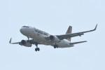 kuro2059さんが、台湾桃園国際空港で撮影したタイガーエア台湾 A320-232の航空フォト(写真)