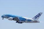 kitayocchiさんが、新千歳空港で撮影した全日空 A380-841の航空フォト(写真)