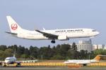 sky-spotterさんが、成田国際空港で撮影した日本航空 737-846の航空フォト(写真)