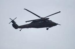 kij niigataさんが、高田駐屯地で撮影した陸上自衛隊 UH-60JAの航空フォト(写真)