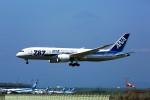 にしやんさんが、新千歳空港で撮影した全日空 787-8 Dreamlinerの航空フォト(写真)